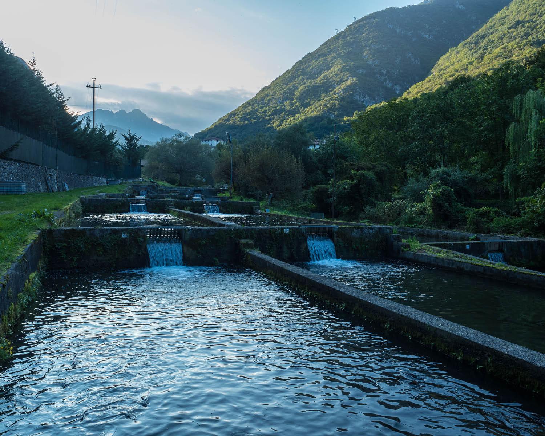 Allevamento e Punto Vendita Biacesa di Ledro (TN) - Troticoltura Armanini